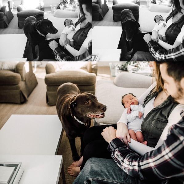 chicagoandsuburbsfamily-photography-adridelacruz-29