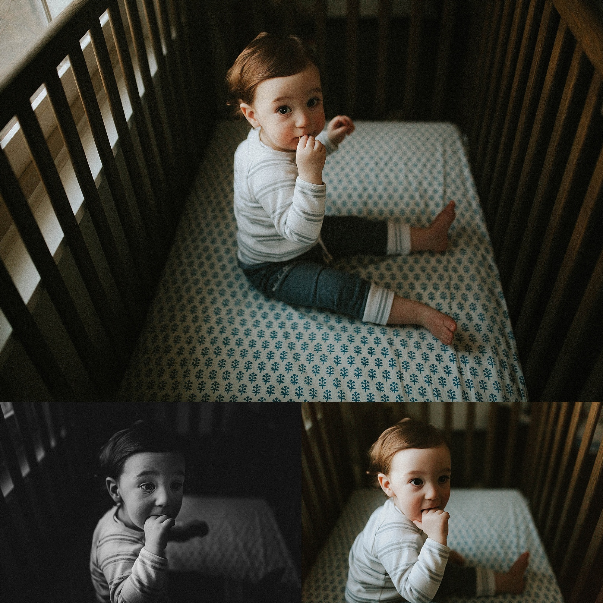 Chicago and west suburbs family photographer Hudson is one (29)