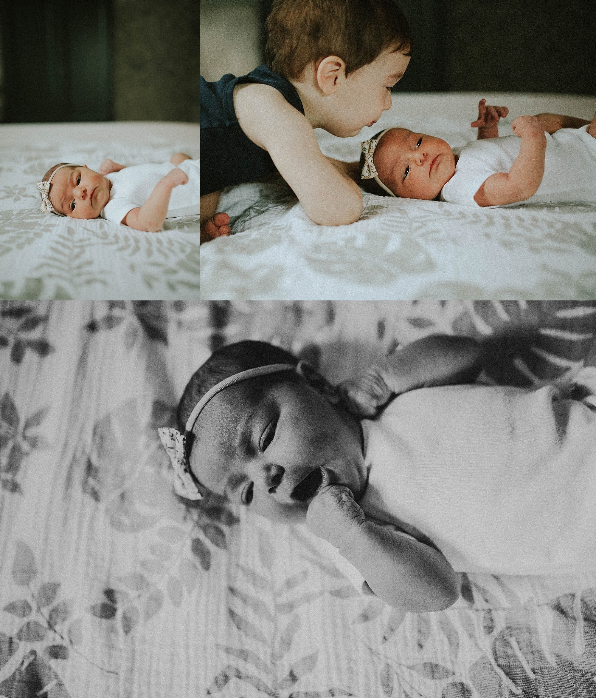 baby h chicago newborn photographer (8)