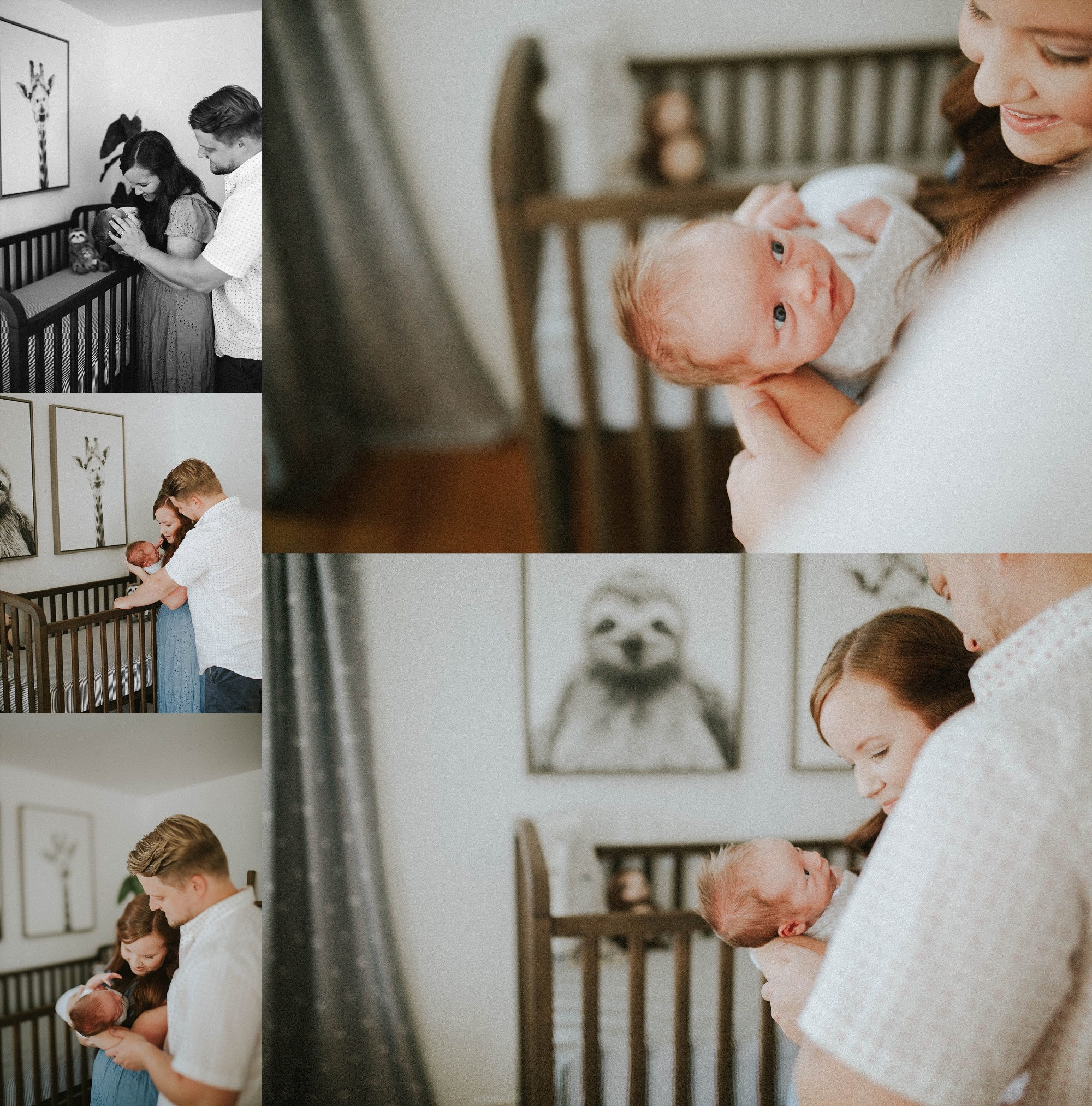 Adri de la cruz chicago and west suburbs best newborn photographer (6)